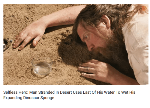 Dinosaur, Water, and Hero: Selfless Hero: Man Stranded In Desert Uses Last Of His Water To Wet His  Expanding Dinosaur Sponge