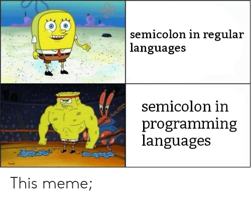 Meme, Programming, and Programming Languages: semicolon in regular  languages  Semicolon in  programming  languages This meme;