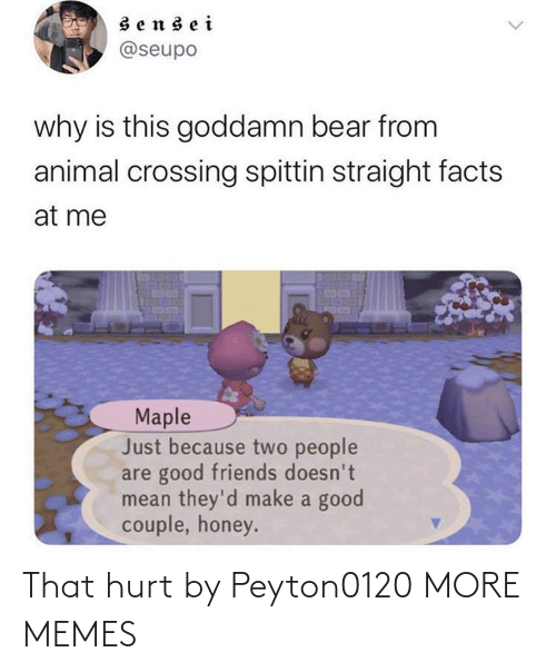 honey: sensei  @seupo  why is this goddamn bear from  animal crossing spittin straight facts  at me  Maple  Just because two people  are good friends doesn't  mean they'd make a good  couple, honey. That hurt by Peyton0120 MORE MEMES