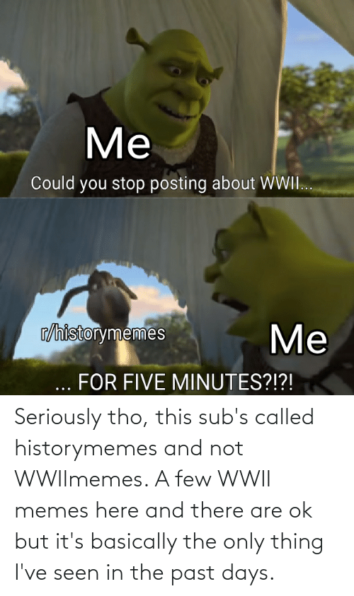 The Past: Seriously tho, this sub's called historymemes and not WWIImemes. A few WWII memes here and there are ok but it's basically the only thing I've seen in the past days.