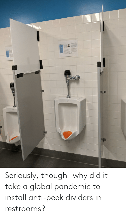 Anti: Seriously, though- why did it take a global pandemic to install anti-peek dividers in restrooms?