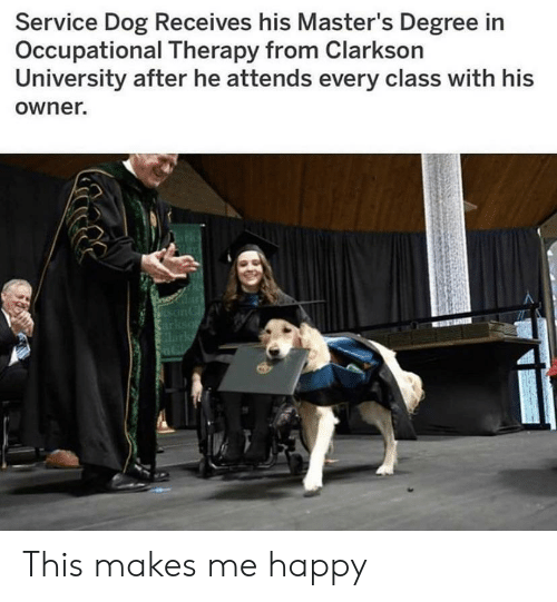 Degree In: Service Dog Receives his Master's Degree in  Occupational Therapy from Clarkson  University after he attends every class with his  owner. This makes me happy