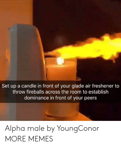 alpha: Set up a candle in front of your glade air freshener to  throw fireballs across the room to establish  dominance in front of your peers Alpha male by YoungConor MORE MEMES