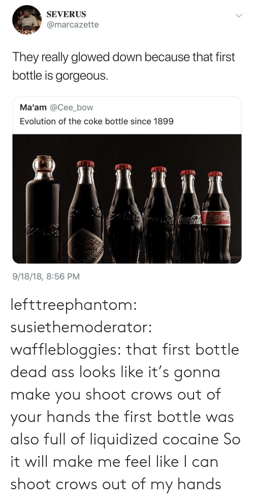 Liquidized: SEVERUS  @marcazette  They really glowed down because that first  bottle is gorgeous.  Ma'am @Cee_bow  Evolution of the coke bottle since 1899  9/18/18, 8:56 PM lefttreephantom: susiethemoderator:  wafflebloggies: that first bottle dead ass looks like it's gonna make you shoot crows out of your hands the first bottle was also full of liquidized cocaine   So it will make me feel like I can shoot crows out of my hands