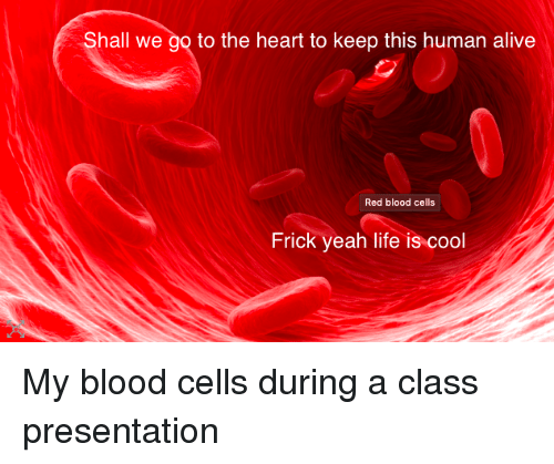 Alive, Frick, and Life: Shall we go to the heart to keep this human alive  Red blood cells  Frick yeah life is cool My blood cells during a class presentation