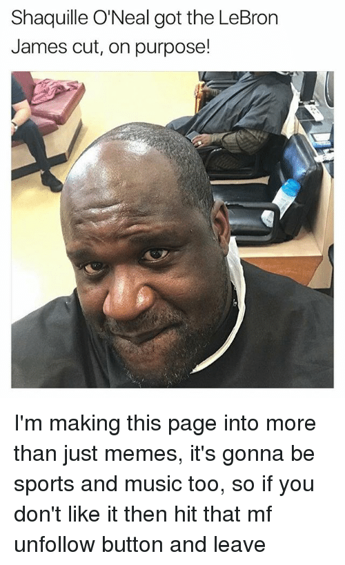 Shaquille O'Neal: Shaquille O'Neal got the LeBron  James cut, on purpose! I'm making this page into more than just memes, it's gonna be sports and music too, so if you don't like it then hit that mf unfollow button and leave