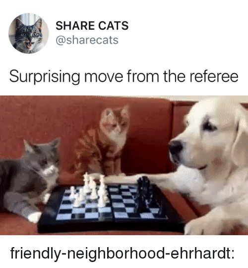 referee: SHARE CATS  sharecats  Surprising move from the referee friendly-neighborhood-ehrhardt: