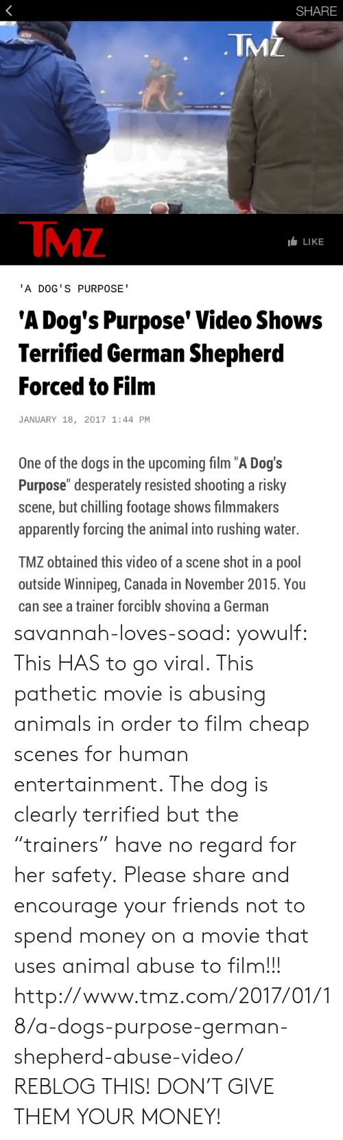 "Obtained: SHARE  TMZ  TMZ  LLIKE  'A DOG'S PURPOSE  'A Dog's Purpose' Video Shows  Terrified German Shepherd  Forced to Film  JANUARY 18, 2017 1:44 PM  One of the dogs in the upcoming film ""A Dog's  Purpose"" desperately resisted shooting a risky  scene, but chilling footage shows filmmakers  apparently forcing the animal into rushing water.  TMZ obtained this video of a scene shot in a pool  outside Winnipeg, Canada in November 2015. You  can see a trainer forcibly shoving a German savannah-loves-soad:  yowulf:  This HAS to go viral. This pathetic movie is abusing animals in order to film cheap scenes for human entertainment. The dog is clearly terrified but the ""trainers"" have no regard for her safety.  Please share and encourage your friends not to spend money on a movie that uses animal abuse to film!!!  http://www.tmz.com/2017/01/18/a-dogs-purpose-german-shepherd-abuse-video/   REBLOG THIS! DON'T GIVE THEM YOUR MONEY!"