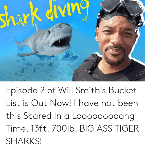 Ass, Bucket List, and Dank: shark divn Episode 2 of Will Smith's Bucket List is Out Now!  I have not been this Scared in a Looooooooong Time.  13ft. 700lb. BIG ASS TIGER SHARKS!