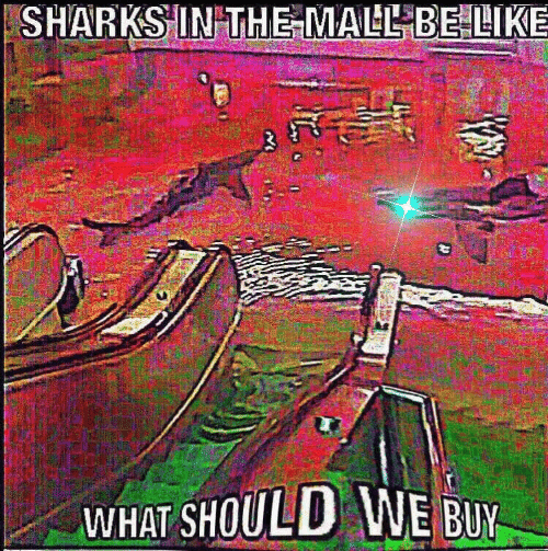 Sharks, What, and  Mall: SHARKS IN THE MALL BELIKE  WHAT SHOULD WE BUY