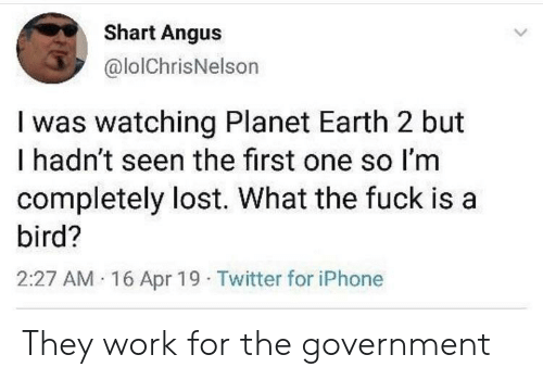 Iphone, Twitter, and Lost: Shart Angus  @lolChrisNelson  I was watching Planet Earth 2 but  I hadn't seen the first one so I'm  completely lost. What the fuck is a  bird?  2:27 AM 16 Apr 19 Twitter for iPhone They work for the government