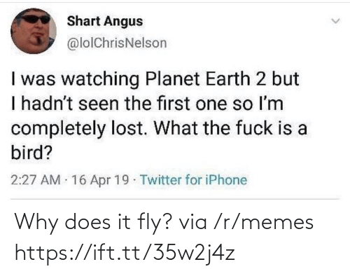 What The Fuck Is: Shart Angus  @lolChrisNelson  I was watching Planet Earth 2 but  I hadn't seen the first one so Im  completely lost. What the fuck is a  bird?  2:27 AM 16 Apr 19 Twitter for iPhone Why does it fly? via /r/memes https://ift.tt/35w2j4z