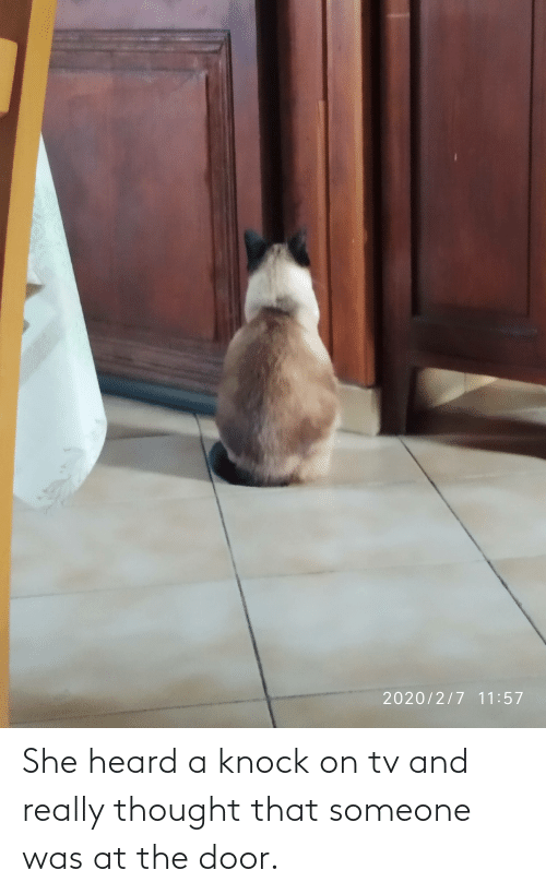 The Door: She heard a knock on tv and really thought that someone was at the door.