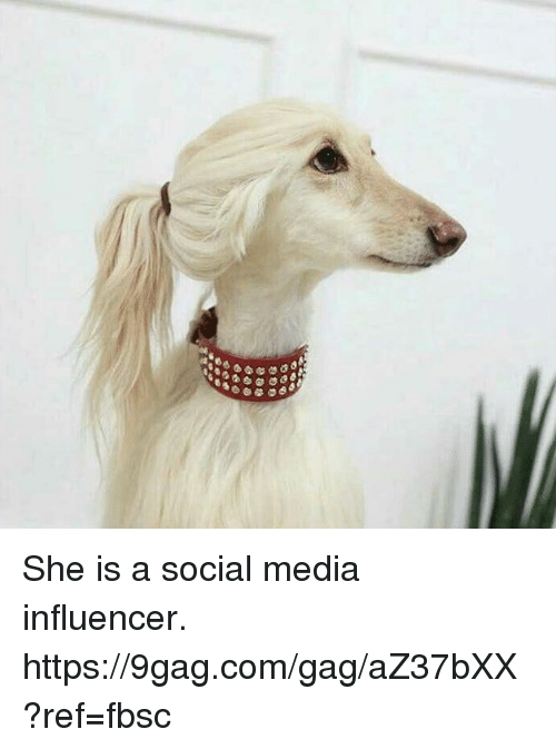 9gag, Dank, and Social Media: She is a social media influencer. https://9gag.com/gag/aZ37bXX?ref=fbsc