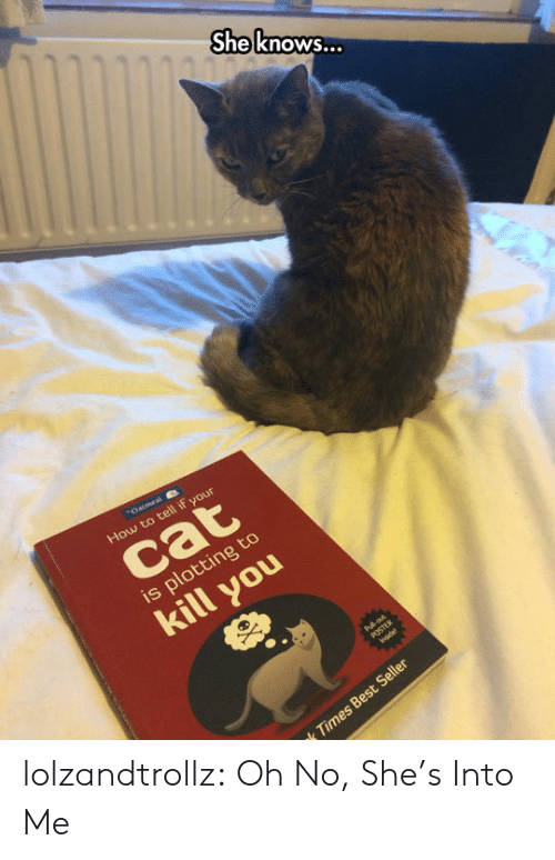 Plotting: She know...  Oatmeal  How to tell if your  cat  is plotting to  kill you  Pul-o  POSTER  lnsde  k Times Best Seller lolzandtrollz:  Oh No, She's Into Me