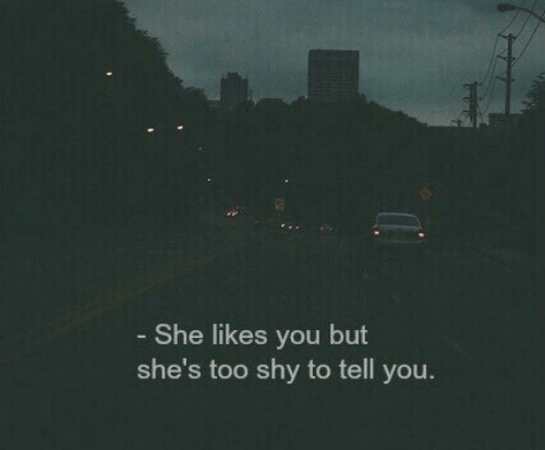 She, You, and Shy: She likes you but  she's too shy to tell you.