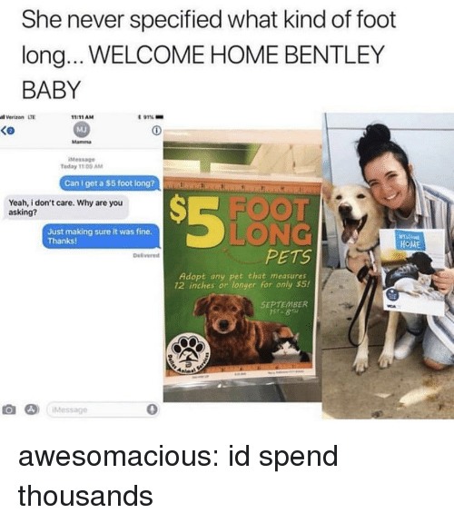Tumblr, Verizon, and Yeah: She never specified what kind of foot  long... WELCOME HOME BENTLEY  BABY  l Verizon LTE  t 91%-  1:11AM  MJ  Mamma  Ko  Message  Today 11 00 AM  Can l get a $5 foot lon  Rim ElrKR  S-FOOT  LONG  PETS  Yeah, i don't care. Why are you  asking?  Just making sure it was fine.  Thanks  HOME  Delivered  Adopt any pet that measures  12 inches or longer for only s5!  SEPTEMBER  み)  ¡Message  0 awesomacious:  id spend thousands