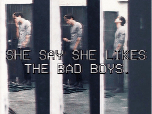 Bad Boys: SHE S SHE LTKES  THE BAD BOYS