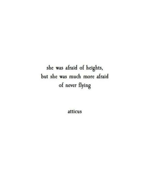 Heights: she was afraid of heights  but she was much more afraid  flying  of never  atticus
