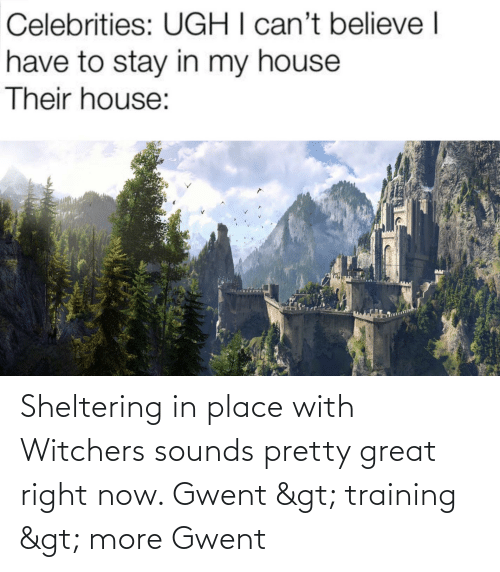 Witchers: Sheltering in place with Witchers sounds pretty great right now. Gwent > training > more Gwent