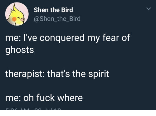 Thats The Spirit: Shen the Bird  @Shen_the_Bird  me: I've conquered my fear of  ghosts  therapist: that's the spirit  me: oh fuck where
