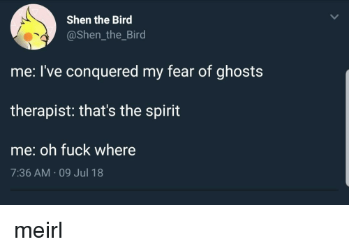 Thats The Spirit: Shen the Bird  @Shen_the_Bird  me: l've conquered my fear of ghosts  therapist: that's the spirit  me: oh fuck where  7:36 AM 09 Jul 18 meirl