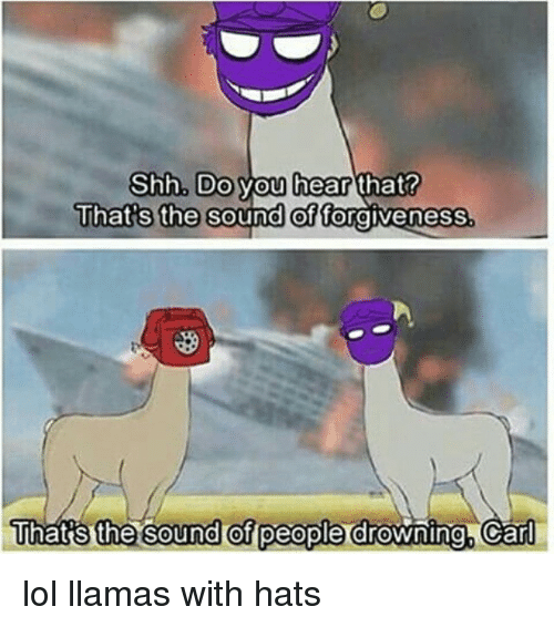 25 Best Memes About Llama With Hats Llama With Hats Memes