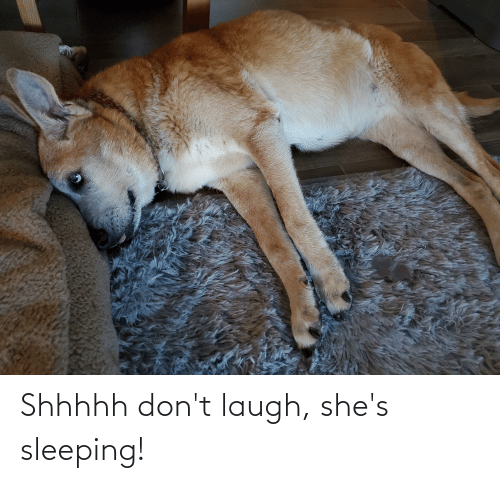 Sleeping, Laugh, and Shes: Shhhhh don't laugh, she's sleeping!