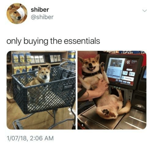 Essentials, The, and Only: shiber  @shiber  only buying the essentials  1/07/18, 2:06 AM