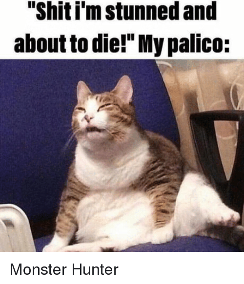 Shit I M Stunned And About To Die My Palico Monster Meme On