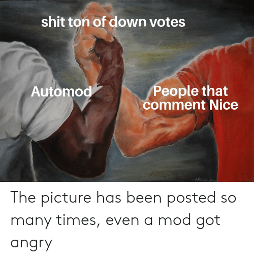 Shit Ton: shit ton of down votes  Automod  People that  comment Nice The picture has been posted so many times, even a mod got angry