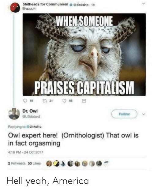 America, Yeah, and Capitalism: Shitheads for Communism e edinksinc 1h  Bruuuuh  WHEN SOMEONE  PRAISES CAPITALISM  64  55  Dr. Owl  Follow  eusdotard  Replying to @dinksinc  Owl expert here! (Ornithologist) That owl is  in fact orgasming  4:18 PM-24 Oct 2017  2 Retweets 53 Likes Hell yeah, America