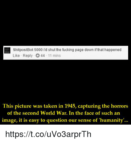 the horrors: ShitpostBot 5000 i'd shut the fucking page down if that happened  Like Reply 44 11 mins  Ihis picture was laken in 1945, capturing the horrors  of the second World War. In the face of such an  image, it is easy to question our sense of 'humanity'... https://t.co/uVo3arprTh