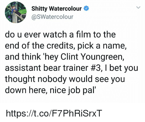 I Bet, Memes, and Bear: Shitty Watercolour  @SWatercolour  do u ever watch a film to the  end of the credits, pick a name,  and think 'hey Clint Youngreen,  assistant bear trainer #3, I bet you  thought nobody would see you  down here, nice job pal' https://t.co/F7PhRiSrxT