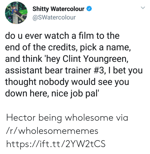 Assistant: Shitty Watercolour  @SWatercolour  do u ever watch a film to the  end of the credits, pick a name  and think 'hey Clint Youngreen,  assistant bear trainer #3 , I bet you  thought nobody would see you  down here, nice job pal' Hector being wholesome via /r/wholesomememes https://ift.tt/2YW2tCS