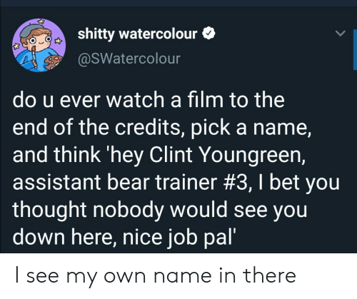 Assistant: shitty watercolour  @sWatercolour  do u ever watch a film to the  end of the credits, pick a name,  and think 'hey Clint Youngreen,  assistant bear trainer #3, I bet you  thought nobody would see you  down here, nice job pal' I see my own name in there