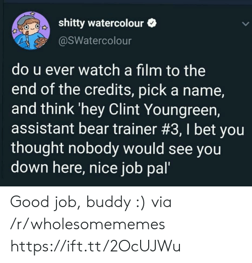 Assistant: shitty watercolour  @SWatercolour  do u ever watch a film to the  end of the credits, pick a name,  and think 'hey Clint Youngreen,  assistant bear trainer #3, I bet you  thought nobody would see you  down here, nice job pal' Good job, buddy :) via /r/wholesomememes https://ift.tt/2OcUJWu