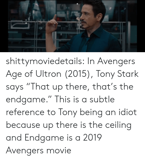 "Avengers Age of Ultron, Target, and Tumblr: shittymoviedetails:  In Avengers Age of Ultron (2015), Tony Stark says ""That up there, that's the endgame."" This is a subtle reference to Tony being an idiot because up there is the ceiling and Endgame is a 2019 Avengers movie"