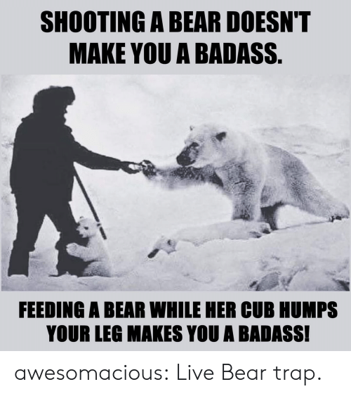 Shooting: SHOOTING A BEAR DOESN'T  MAKE YOU A BADASS.  FEEDING A BEAR WHILE HER CUB HUMPS  YOUR LEG MAKES YOU A BADASS! awesomacious:  Live Bear trap.