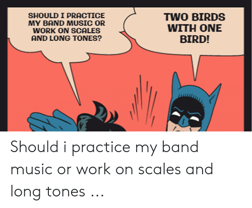 Band Practice Meme: SHOULD I PRACTICE  MY BAND MUSIC OR  WORK ON SCALES  AND LONG TONES?  TWO BIRDS  WITH ONE  BIRD! Should i practice my band music or work on scales and long tones ...