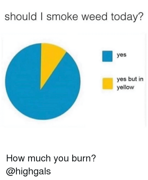 Memes, Weed, and Today: should I smoke weed today?  yes  yes but in  yellow How much you burn? @highgals