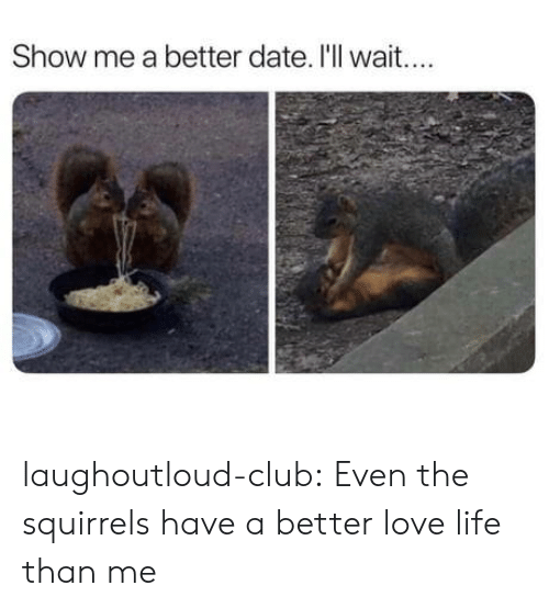 squirrels: Show me a better date. I'll wait.... laughoutloud-club:  Even the squirrels have a better love life than me
