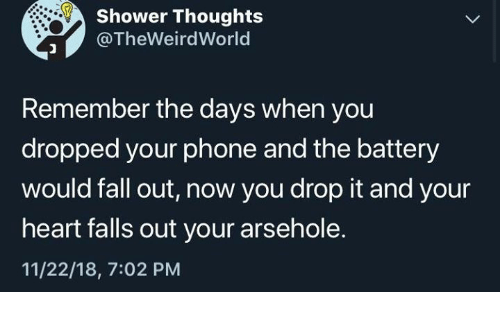 Dank, Fall, and Phone: Shower Thoughts  @TheWeirdWorld  Remember the days when you  dropped your phone and the battery  would fall out, now you drop it and your  heart falls out your arsehole.  11/22/18, 7:02 PM