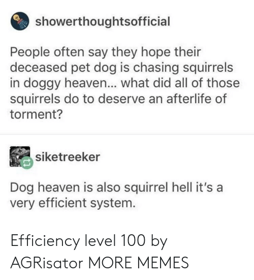 Anaconda, Dank, and Heaven: showerthoughtsofficial  People often say they hope their  deceased pet dog is chasing squirrels  in doggy heaven... what did all of those  squirrels do to deserve an afterlife of  torment?  siketreeker  Dog heaven is also squirrel hell it's a  very efficient system. Efficiency level 100 by AGRisator MORE MEMES