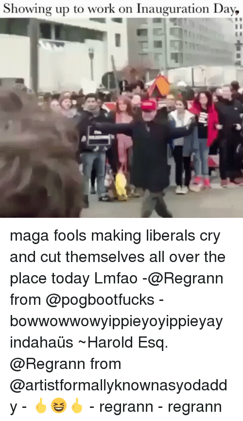 Liberal Crying: Showing up to work on Inauguration Day, maga fools making liberals cry and cut themselves all over the place today Lmfao -@Regrann from @pogbootfucks - bowwowwowyippieyoyippieyay indahaüs ~Harold Esq. @Regrann from @artistformallyknownasyodaddy - 🖕😆🖕 - regrann - regrann