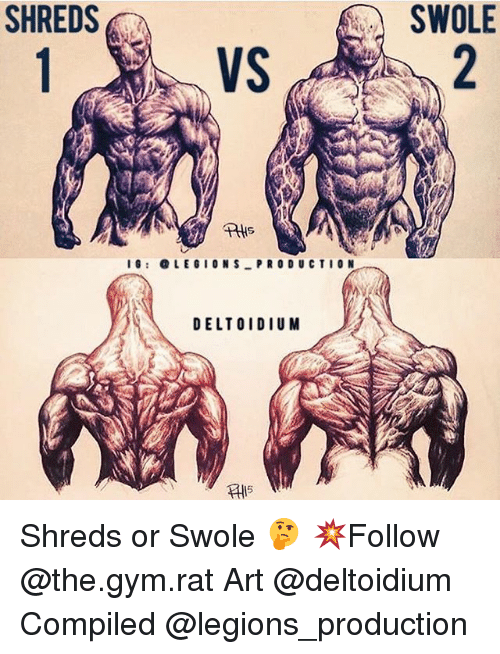 Gym, Memes, and Swole: SHREDS  SWOLE  VS  IG: OLEGIONS PRO DUCTION  DELTOIDIUM  AlIS Shreds or Swole 🤔 💥Follow @the.gym.rat Art @deltoidium Compiled @legions_production