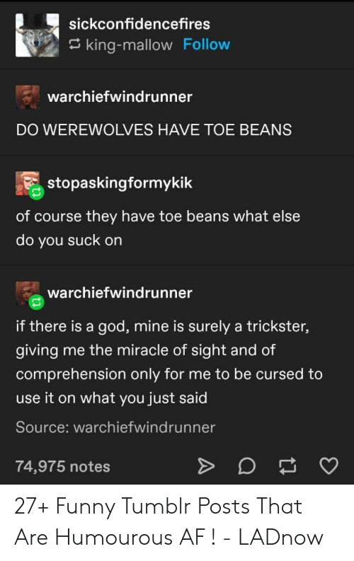beans: sickconfidencefires  king-mallow Follow  warchiefwindrunner  DO WEREWOLVES HAVE TOE BEANS  stopaskingformykik  of course they have toe beans what else  do you suck on  warchiefwindrunner  if there is a god, mine is surely a trickster,  giving  me the miracle of sight and of  comprehension only for me to be cursed to  use it on what you just said  Source: warchiefwindrunner  74,975 notes 27+ Funny Tumblr Posts That Are Humourous AF ! - LADnow