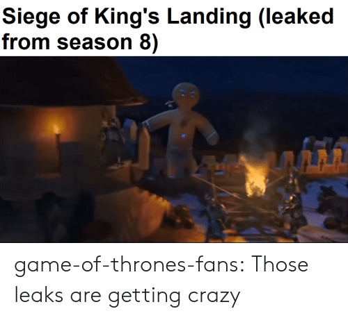 Crazy, Game of Thrones, and Tumblr: Siege of King's Landing (leaked  from season 8) game-of-thrones-fans:  Those leaks are getting crazy