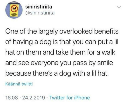 Iphone, Twitter, and Smile: siniristiriita  @siniristiriita  One of the largely overlooked benefits  of having a dog is that you can put a lil  hat on them and take them for a wallk  and see everyone you pass by smile  because there's a dog with a lil hat.  Käännä twiitti  16.08 24.2.2019 Twitter for iPhone