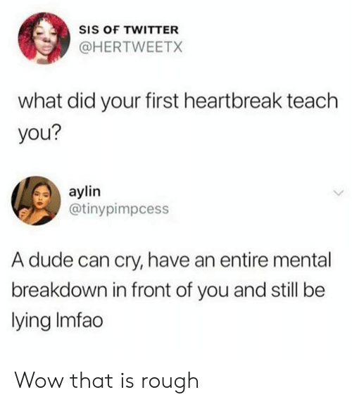 Dank, Dude, and Twitter: SIS OF TWITTER  @HERTWEETX  what did your first heartbreak teach  you?  aylin  @tinypimpcess  A dude can cry, have an entire mental  breakdown in front of you and still be  lying Imfao Wow that is rough